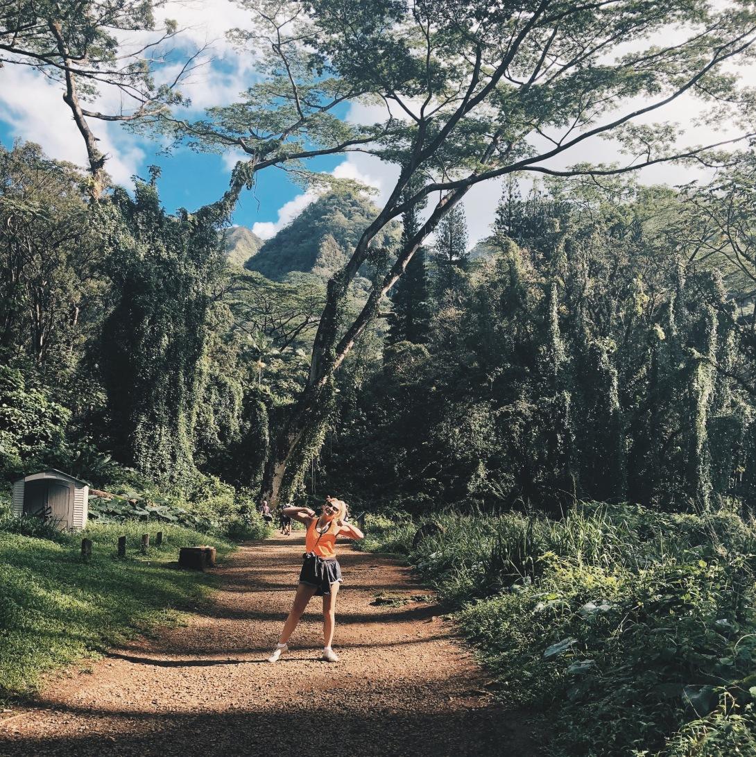 Travel Guide Oahu Hawaii Hike Manoa Falls